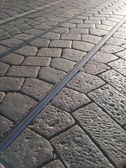 Rails in Milan (paolocammarata) Tags: rails track milano milan dil train tram treno vintage street biancoenero black white travel trip viaggio città city stop fermata strada station stazione