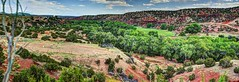 Jemez River Valley Paddock (JoelDeluxe) Tags: jemez mountains cochiti canyon newmexico panorama landscape burned area trees skies rocks green riparian nm hdr joeldeluxe