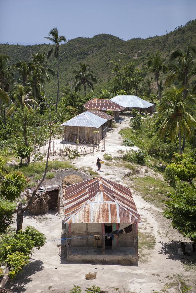 AVSF-HAITI-2017-TRISTANPARRY217
