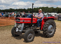 IMG_0181_Woodcote Rally 2017_0226 (GRAHAM CHRIMES) Tags: woodcote rally 2017 steam woodcoterally2017 woodcotesteamrally2017 woodcoterally transport traction tractionengine tractionenginerally steamrally steamfair showground steamengine show steamenginerally vintage vehicle vehicles vintagevehiclerally vintageshow heritage historic classic country commercial preservation wwwheritagephotoscouk restoration woodcotesteam masseyferguson 135 tractor 1969 sdf666h