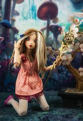 Haley (twilitize) Tags: adorable adventure art awesome beautiful beauty bjd bjdphotography cool cute cutie doll dolly dollphotography dolls darling fantasy fun fiction florida fashion fairyland minifee girl girls girly good