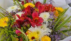 Flower Bouquet (swong95765) Tags: bouquet flowers arrangement pretty beautiful lovely fragrant