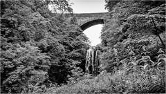 Ash Gill Force . (wayman2011) Tags: fujifilmxt10 lightroom wayman2011 bwlandscapes mono bridges waterfalls water pennines dales ashgill cumbria uk