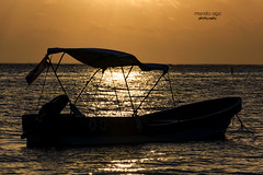 ... tranquility (mariola aga) Tags: puntacana atlanticocean ocean morning sunrise light glow reflection boat silhouette peace tranguality golden tones
