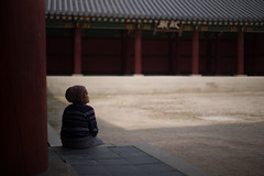 Seoul (Dimitri Tenezakis) Tags: seoul southkorea changgyeonggung palace ancient monument historic architecture building red color city urban old woman contemplation street streetphotography
