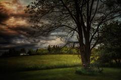 All is Calm (Carolyn Little) Tags: novascotia fields sky hay clouds ie magicunicornverybest hi netartii