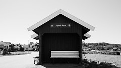 Wait Here (juliolunap) Tags: outdoors archipielago nature goteborg gothemburg sweden sverige bluesky blue water islands island aspero black white bnw blackandwhite blackwhite blackandwhiteporn