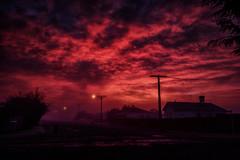 Red Freeze @ 8.45am (Kevin_Jeffries) Tags: freeze new morning newzealand 845am winter nature red urban streetlight d7100 nikon nikkor street fog