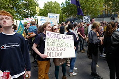 a year on (aka Jon Spence) Tags: london brexit eu europe marchforeurope placard michaelgove marzipan useless londonist