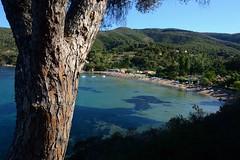 Elba_Straccoligno_00001 (moniq84) Tags: elba island isola tuscany toscana italy italia mare sea seascape seascapes green trees sky blue summer june sand beach straccoligno
