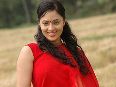 Indian Actress Nikesha Patel Hot Sexy Images Set-2 (2)