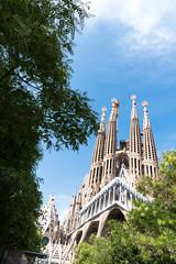 DSC05312 (arden.demirci) Tags: barcelona ispanya spain katalonya cataluña catalunya catalonha barselona picture sony travel traveler photographer photo love holiday madrid