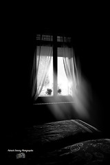 Rayons de lumière ( photopade (Nikonist)) Tags: rayons lumière affinityphoto nikon nikond70 nb bw rays ligh
