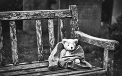 Someone Cares (Fourteenfoottiger) Tags: teddybear bear churchyard graveyard bench monochrome blackandwhite highcontrast deserted abandoned lost lonely textures sad toy cuddlytoy rescue alone solitary