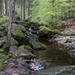 Steinklamm bei Spiegelau, Bayrischer Wald - Germany - 170505
