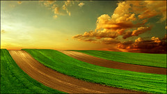 Sunset over the Pannonian sea (Katarina 2353) Tags: landscape sunset summer fields katarina2353 katarinastefanovic panorama