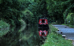 World of water (Lee1885) Tags: grindleybrook shropshire water canal boat narrowboat reflection pigeon trees