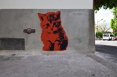 Chaton (HBA_JIJO) Tags: streetart urban graffiti vitry vitrysurseine pochoir stencil animal art france hbajijo wall mur painting chat peinture cat paris94 spray urbain