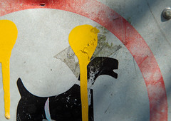 Splash! (jimj0will) Tags: splash macromonday mm dog yellow sign red texture