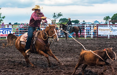 DSC_3758-Edit (alan.forshee) Tags: rodeo horse cow ride fall buck spin twirl bull stallion boy girl barrel rope lariat mud dirt hat sombrero