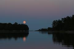 Pink moon rising (liisatuulia) Tags: kuutamo porkkala fullmoon evening moonlight finland sea water reflection