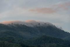 hills - phuket thailand (Greg M Rohan) Tags: mistyhills cloud d7200 2017 photography mountain asia thailand phuket patong mist misty hills hill green trees nature