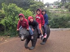 (rlnv) Tags: california bayarea sanfrancisco sanfranciscozoo zoo walter tomás iphone5 caitlin jacob