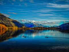 Lake Hayes (Stuck in Customs) Tags: glenorchy newzealand stuckincustomscom treyratcliff hdr hdrphotography hdrtutorial stuckincustoms lake bird mountain sky blue reflection x1d hasselblad