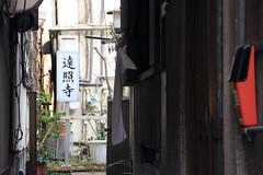 路地奥の寺院 2 (Yuri Yorozuna / 萬名 游鯏(ヨロズナ)) Tags: eos60d 遠照寺 onshoji onshouji onsyoji onsyouji onshotemple onshoutemple onsyotemple onsyoutemple onshojitemple onshoujitemple onsyojitemple onsyoujitemple 寺院 寺 寺社 temple 路地 路地奥 細道 細路 裏路地 路地裏 backalley alley alleyway 通路 小道 路 道 passage passageway pathway 呉市 呉 kure 広島県 広島 hiroshima japan