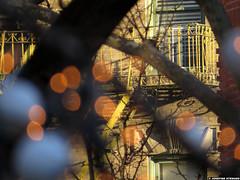20161225_05 ChriFSMas lights, white baubles, & yellow fire escape | Chelsea, New York City, USA (ratexla) Tags: ratexla'snewyorktrip2016 newyorkcity 25dec2016 2016 canonpowershotsx50hs newyork usa theus unitedstates theunitedstates america northamerica nordamerika earth tellus manhattan photophotospicturepicturesimageimagesfotofotonbildbilder wanderlust winter chrifsmas xmas christmas travel travelling traveling journey vacation holiday semester resaresor urban city town storstad storstäder storstadssemester ontheroad chelsea building buildings house houses fireescape brandtrappa brandtrappor fireescapes favorite