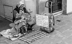 Beggar (maugustocabral) Tags: spain sevilha beggar dog d3100