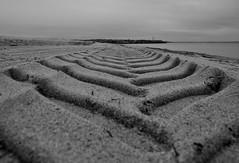 Spuren am Strand 1 / track at the beach 1 (Lichtabfall) Tags: inselpoel poel spuren tracks strand beach blackandwhite blackwhite bw sw schwarzweiss monochrome sand timmendorf timmendorfstrand ostsee mecklenburgvorpommern