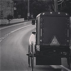 Spotted a buggy on our way to Pittsburg (saadia_khans) Tags: streetphotography streetphoto street streetscene pennsylvania lancasterpa travel blackandwhite buggy instagramapp square squareformat iphoneography willow