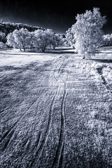 Escape route (citrusjig) Tags: pentax wisconsin kx blackandwhite toned infrared irconverted fullspectrum manualfocus sigma1020mmf456 bw090redfilter