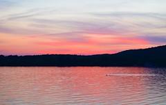 Sunset in the Adirondacks (rachel.odonnell_3) Tags: sunset pink red lake mountain adirondack lakepleasant water purple sky