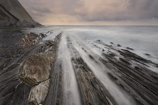 The Flysch
