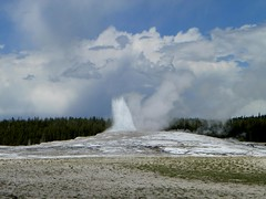 Yellowstone - Old Faithful pic2 (michaelyouhas) Tags: yellowstone national park 2017 youhas nature old faithful geyser hot springs