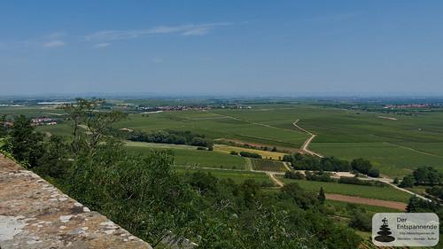 Ausblick von Burg Battenberg  Rheinebene