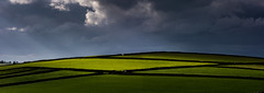 Storm Clouds and Golden Fields (Peter Quinn1) Tags: litton derbyshire monsaldale goldenfields sunlight storm stormclouds goldenlight buttercups countryside evening darkclouds crepuscularrays lightshadow diamonds geometry abstract shapes lines