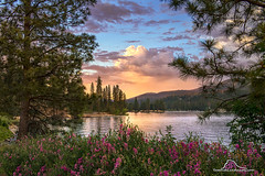Father's Day Sunset on Bass Lake (Darvin Atkeson) Tags: bass lake california sunset oakhurst sierra nevada mountains forest pines shore light glow reflection water rain snow elnino darv darvin atkeson lynneal yosemitelandscapescom