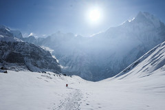 On the way down from ABC (munjean) Tags: annapurnabasecamp nepal trekking snow camp hiking mountains machappuchre