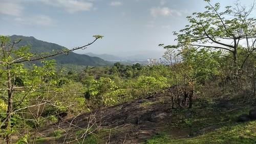 Yeoor Hills