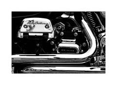 HD in Matlock B (RichardK2017) Tags: lifeistooshorttopolish olympuspenf zuiko75mm hd shiny