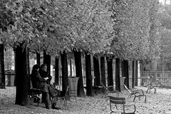 Lunch in the Park (peterreading) Tags: concorde placedelaconcorde paris parisian couple park lunch romance romantic peace peaceful autumn winter fall leaves city france french europe european people watch