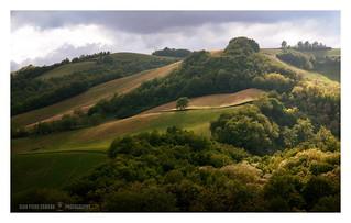 Luci e ombre sulle colline
