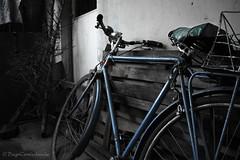 Un pedaleo hacia el pasado (Diego Cortés Aranda) Tags: retro past contraste lights bike bicicleta pasado rancagua chile