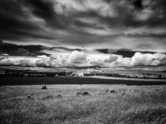 Plateau du larzac (Maurice HUCHON) Tags: monochrome nb noir blanc black white larzac aveyron nuage sky ciel cloud campagne millau