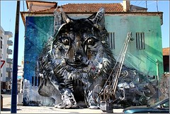 The Wolf by Robalo II (JRodrigues.) Tags: img5304 2016 europe portugal fundão streetart wolf robaloii house wall