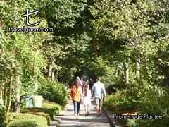 Promenade Plantée (travelgasm) Tags: promenadeplantée promenadeplantee couléeverte couleeverte greencourse highline park paris france walk travel travelgasm