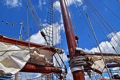 Mast and Rigging (AntyDiluvian) Tags: boston massachusetts harbor tallships sailboston pier dock wharf schooner treeoflife mast boom sails furledsails rigging